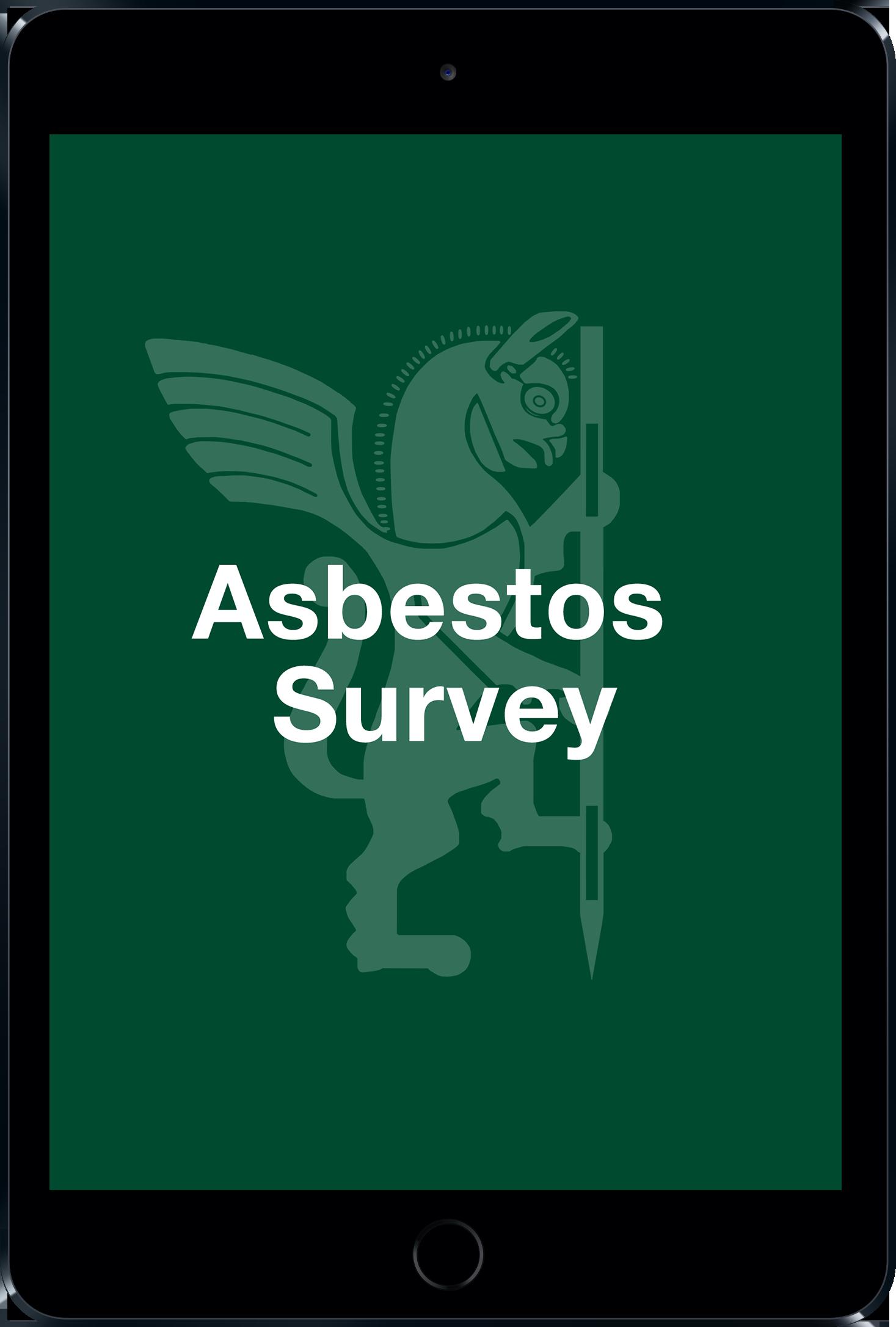 Asbestos survey b56a7e6e4a73858dd15a025160967c5e5e1f783587ed30075d8a0ac8e4e1ce36
